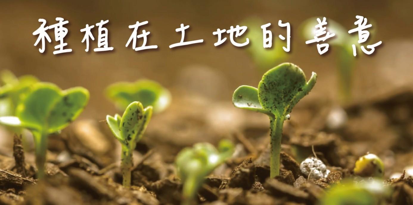 【影刻台灣】生態環境崩壞?喝不到蜂蜜檸檬,還會引發食物戰爭!